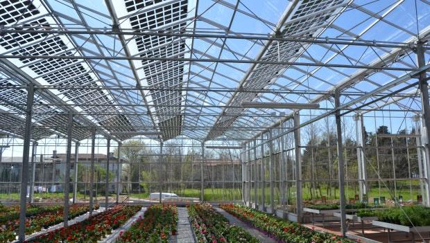 Nuova Sabatini: contributi per le aziende agricole che innovano