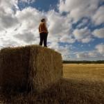 agricoltura-e1396008581181-780x480