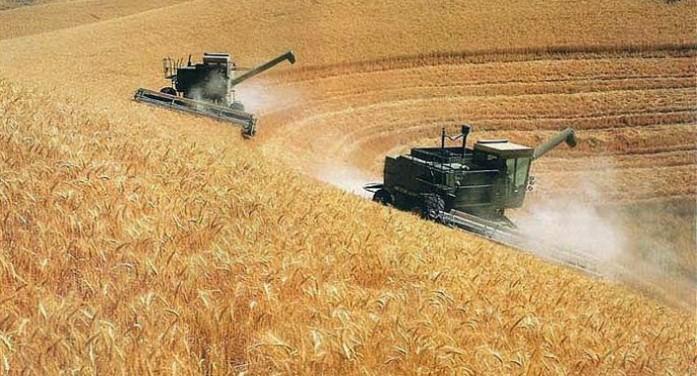 Landgrabbing in Ucraina, l'attacco delle multinazionali al granaio d'Europa