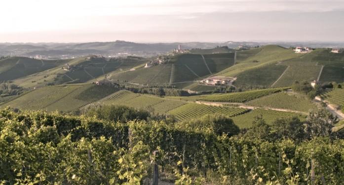 Barbaresco Asili Riserva primo italiano nella Top 100 di Wine Spectator
