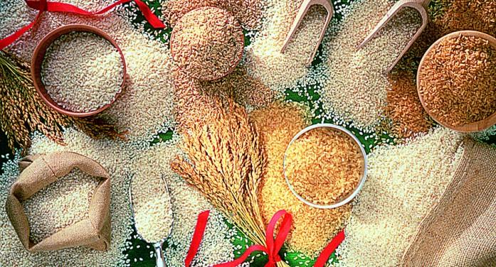 Il Piemonte guida l'appello al Governo: subito nuova legge sul riso e etichettura