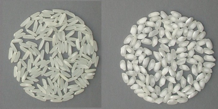 Tavolo Verde per difendere il riso e Confagricoltura chiede stato di crisi