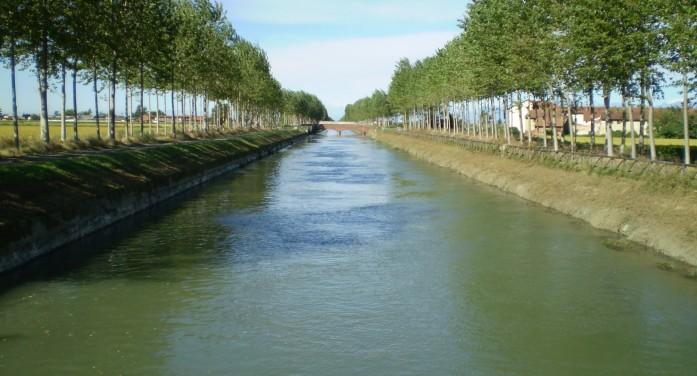 Consorzi di bonifica e risaia custodi della coltre idrica