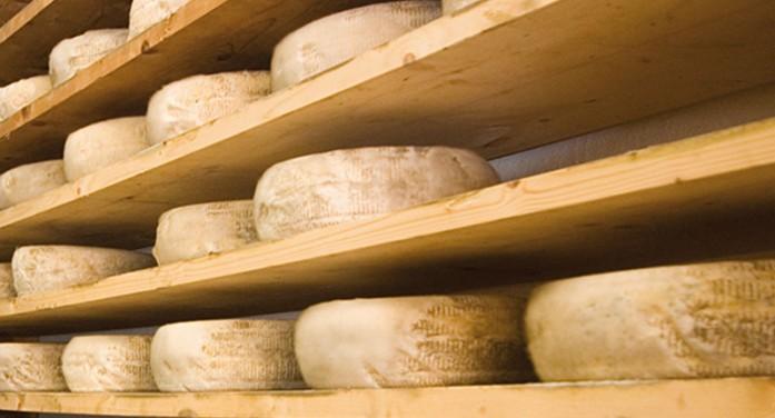 La carica dei Pat: il caso del formaggio made in balma