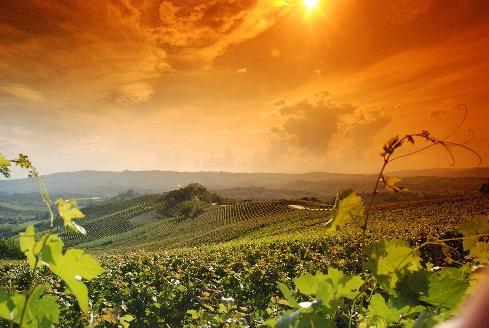 Memoria&Futuro: quando Giuseppina guidava le donne del vino