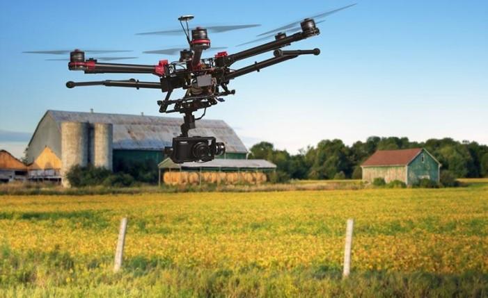Tutti in campo, sul web e in tv l'agricoltura Made in Piemonte