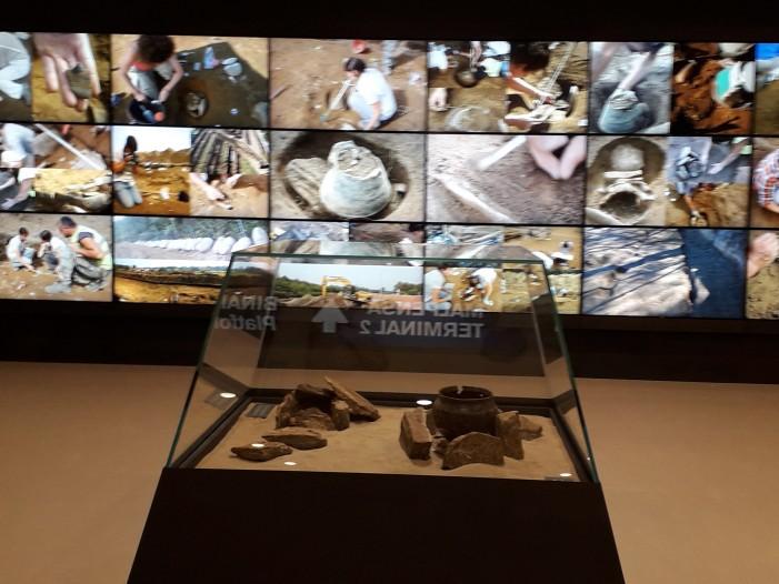 Insubri, 3 mila anni dopo spiccano il volo a Malpensa (photogallery)
