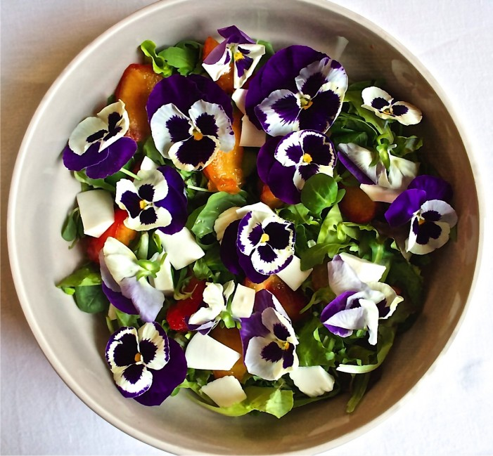 Metti un fiore nei nostri piatti: la via gastronomica della floricoltura
