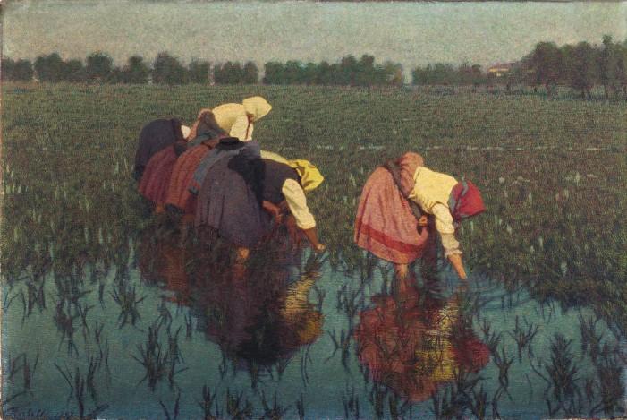 """Con """"Le risaiuole"""" di Morbelli torna dopo un secolo la vita in risaia"""