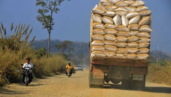 Inchiesta su import riso asiatico: conclusa l'istruttoria, un passo avanti
