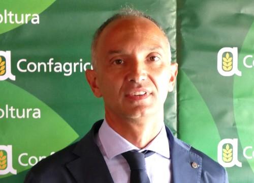 Confagricoltura: Tav strategica per le 50 mila imprese agricole piemontesi