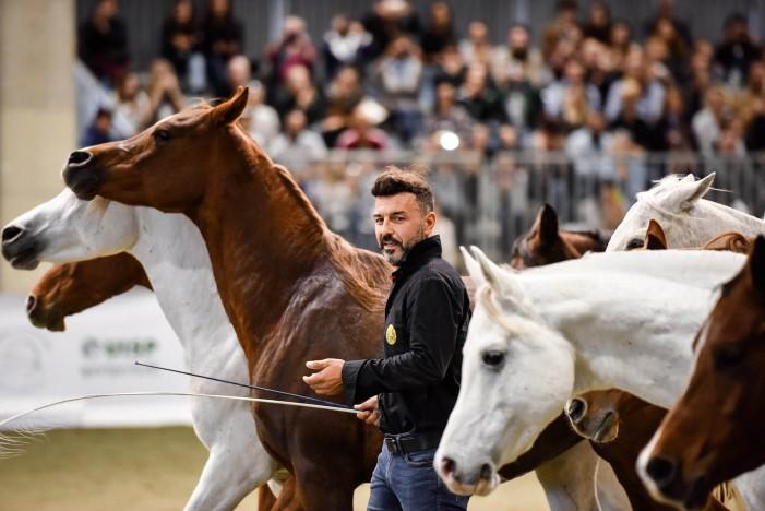 Italia a cavallo, i 120 anni della Fiera con 160 mila visitatori