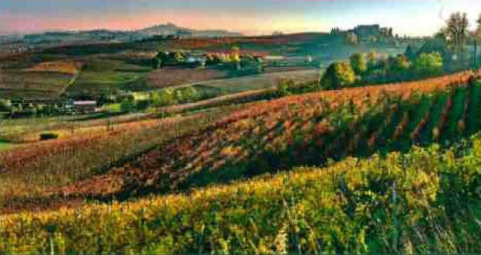 Langhe-Roero-Monferrato: 200 centraline per auto elettriche