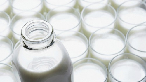 """""""Tabella unica sul prezzo del latte alla stalla"""""""