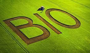 Ricercatori, docenti, imprenditori, sul testo dell'agricoltura bio: così non va