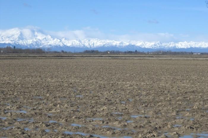 Agricoltura più snella, approvata nuova legge in Piemonte