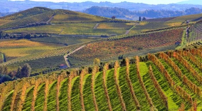 """""""Piemonte virtuoso"""" per i pagamenti Psr"""