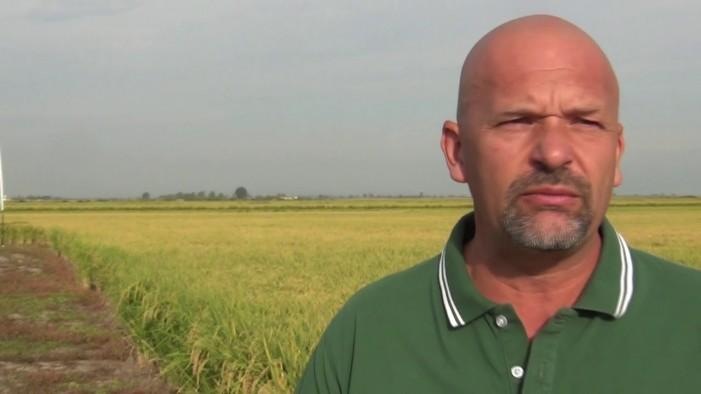 Dal riso nero all'Uruguay, per ampliare le conoscenze