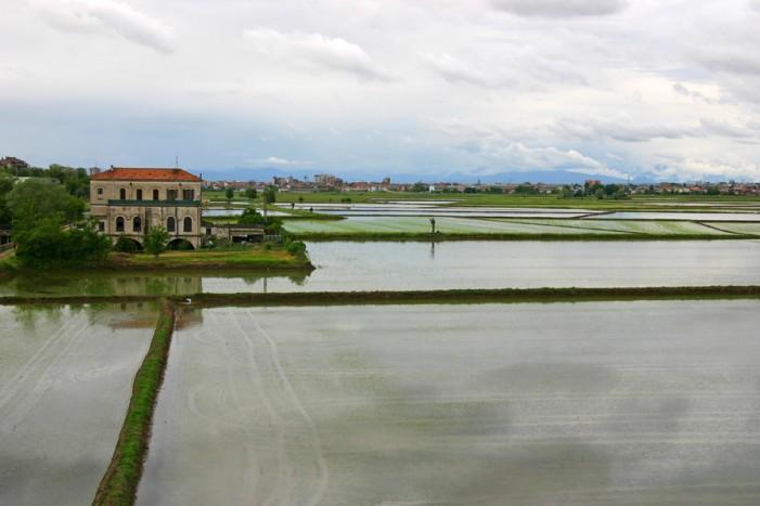 Accordo Università-Regione per una ricerca sulle Terre d'Acqua