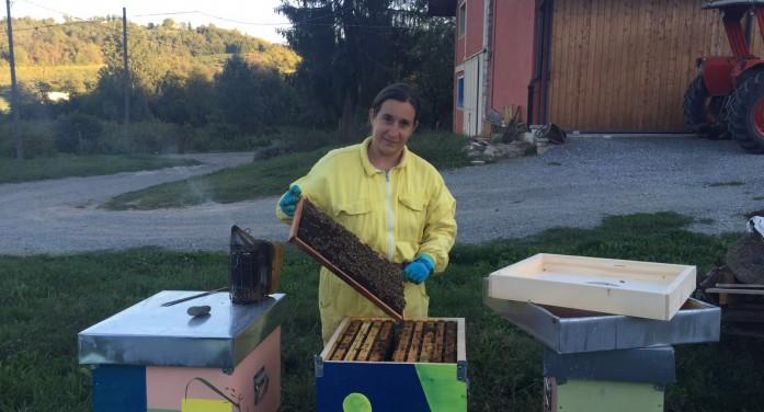 """""""Le api muoiono di fame, dobbiamo nutrire le famiglie"""""""