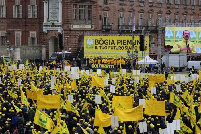 """""""Bogia Piemunt"""": la carica dei 20 mila berretti gialli Coldiretti  (photogallery)"""