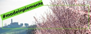 madepiemonte