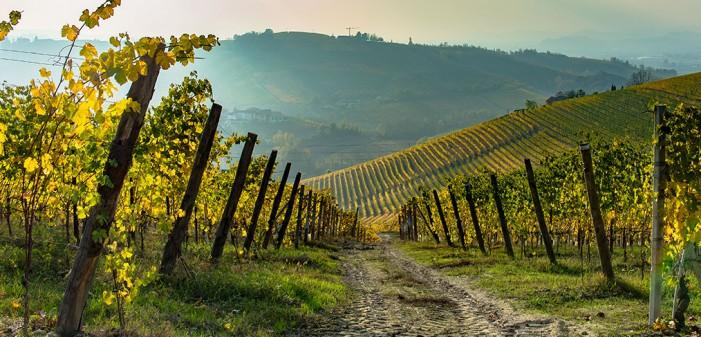 Piemonte oltre: parte il bando per la promozione