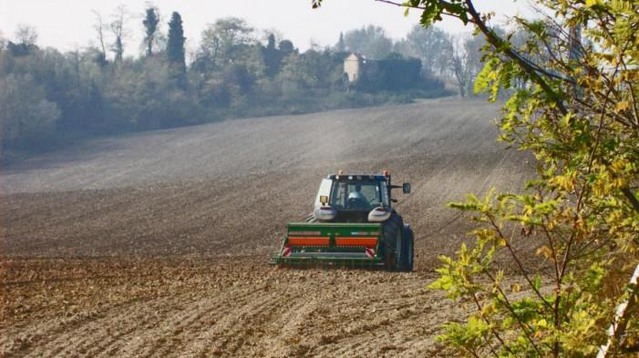 Agroambiente e bio, via ai bandi in Piemonte