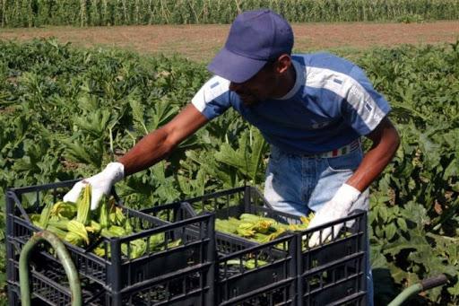 Contributi ai Comuni che ospitano i lavoratori stagionali