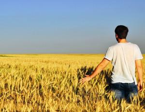 quaderni agricoltura
