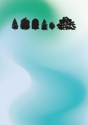 Green e sostenibile: il Festival di Stresa compie 60 anni